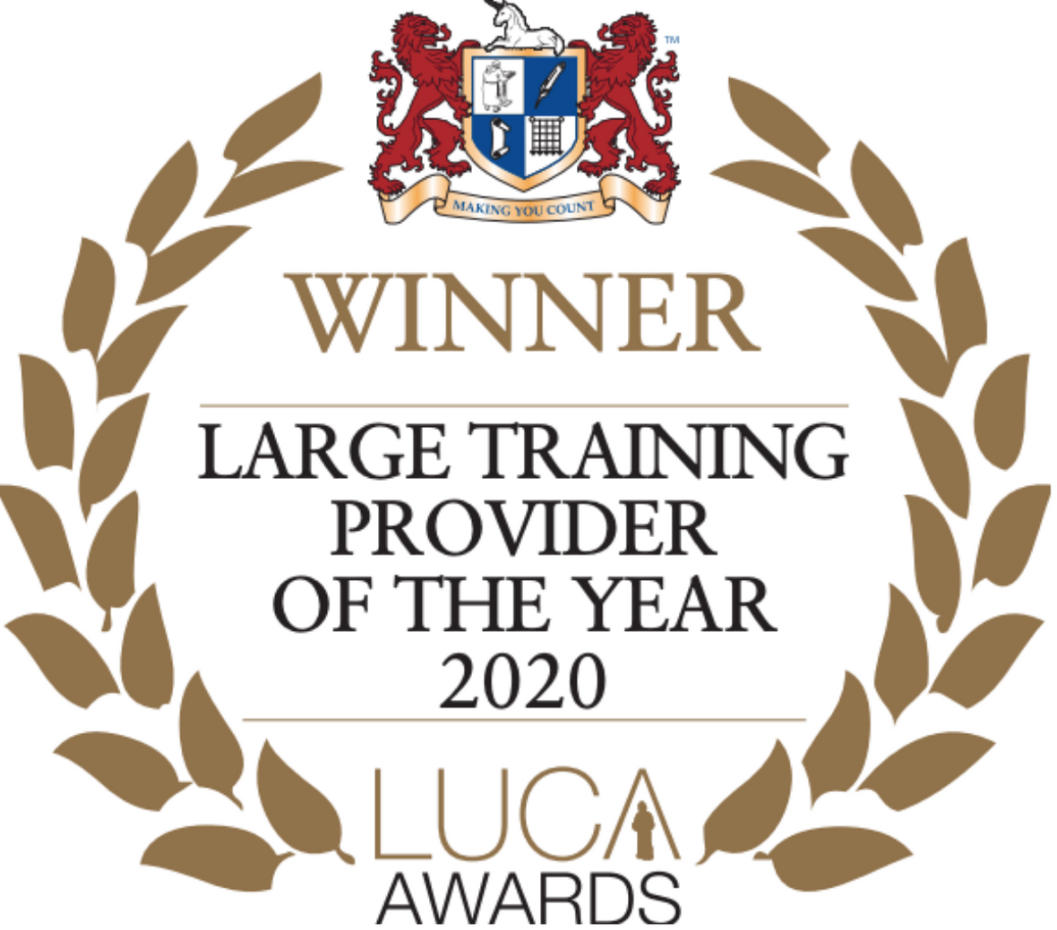 Large Training Provider of The Year 2020